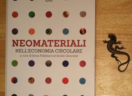 """""""Neomateriali nell'economia circolare"""" una guida"""